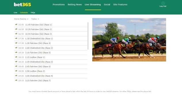 Best Horse Racing Sites in India » Bet on Horse Racing in India