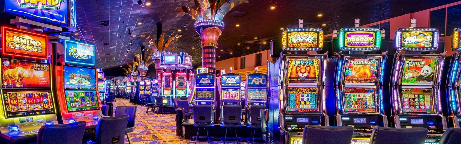 Online Casino India Find The Best Online Casinos In India Here